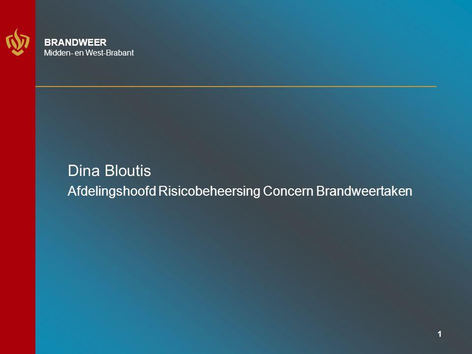 Dina Bloutis Afdelingshoofd Risicobeheersing Concern Brandweertaken