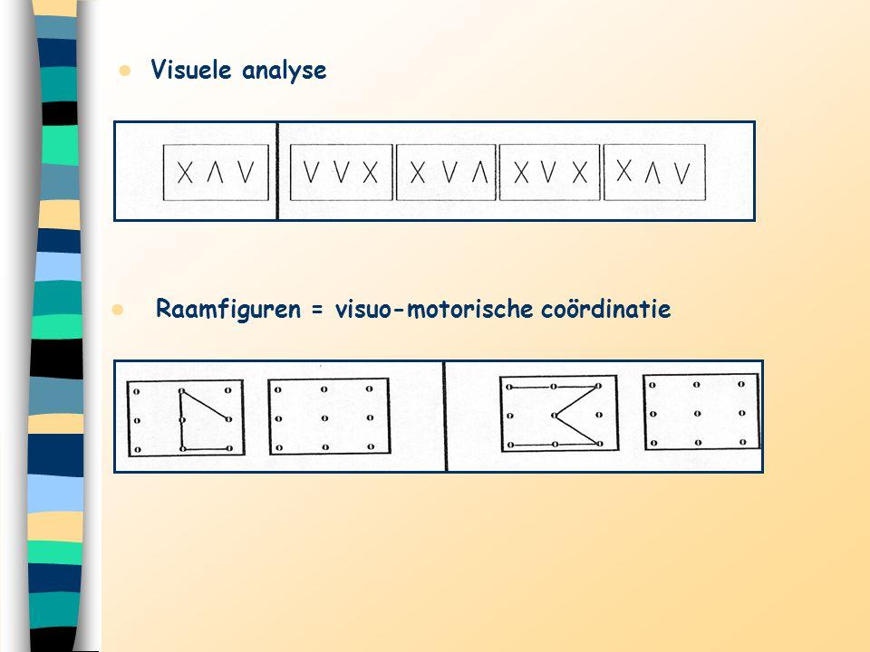 Visuele analyse Raamfiguren = visuo-motorische coördinatie