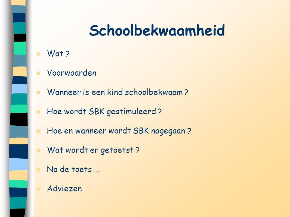 Schoolbekwaamheid Wat Voorwaarden