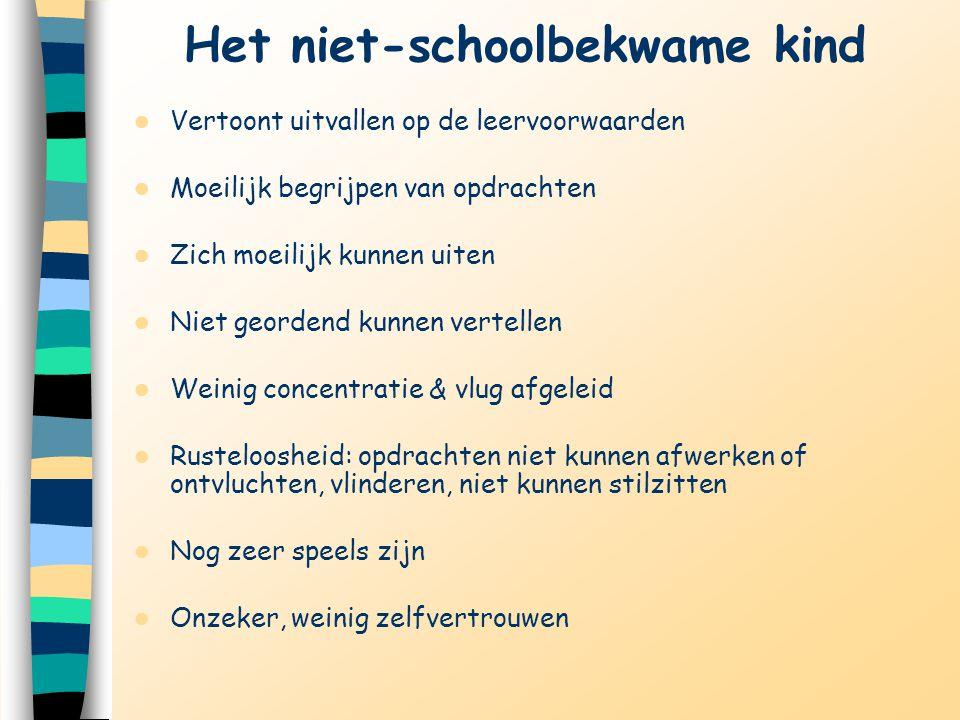 Het niet-schoolbekwame kind