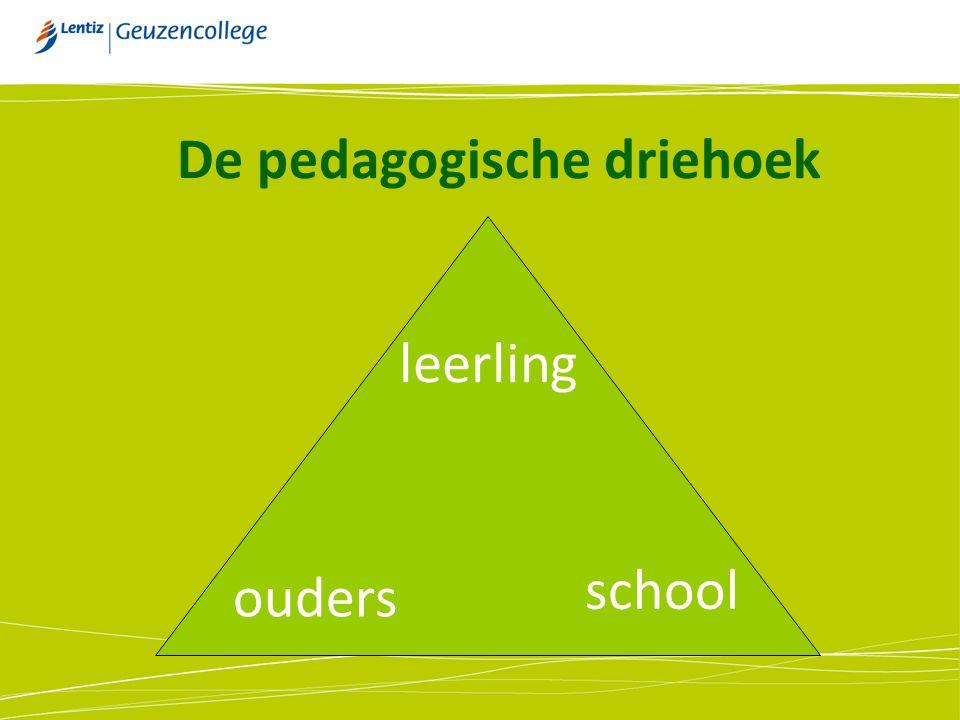 De pedagogische driehoek