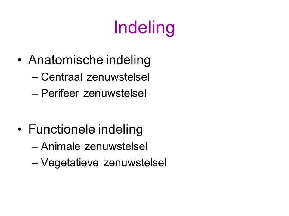 Indeling Anatomische indeling Functionele indeling