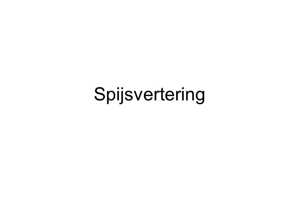 Spijsvertering