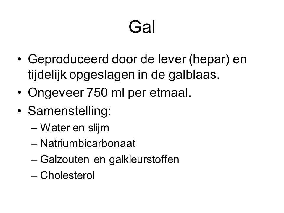 Gal Geproduceerd door de lever (hepar) en tijdelijk opgeslagen in de galblaas. Ongeveer 750 ml per etmaal.
