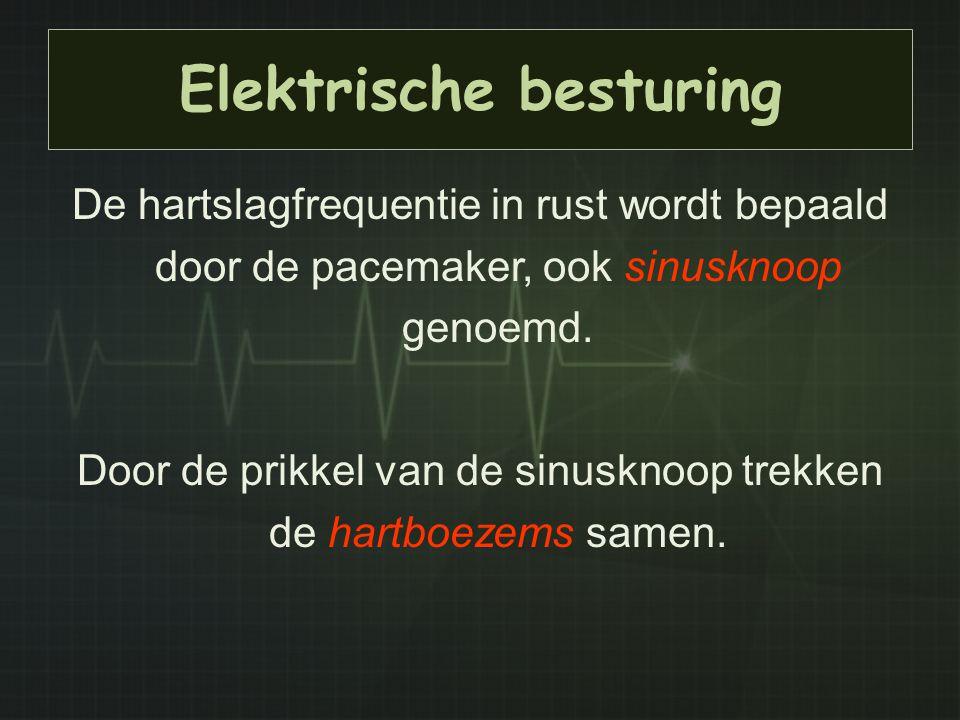 Elektrische besturing