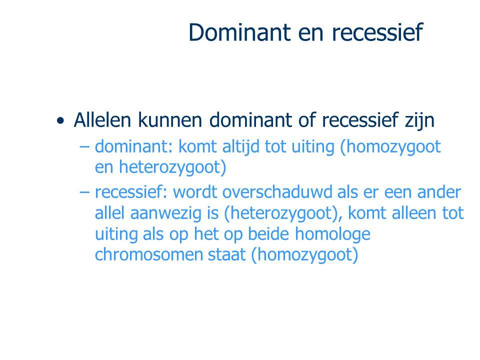 Dominant en recessief Allelen kunnen dominant of recessief zijn
