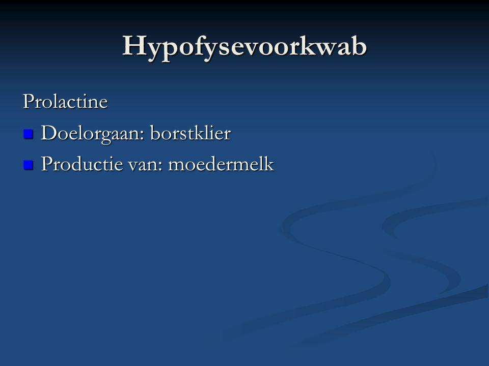 Hypofysevoorkwab Prolactine Doelorgaan: borstklier