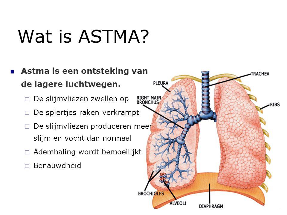 Wat is ASTMA Astma is een ontsteking van de lagere luchtwegen.