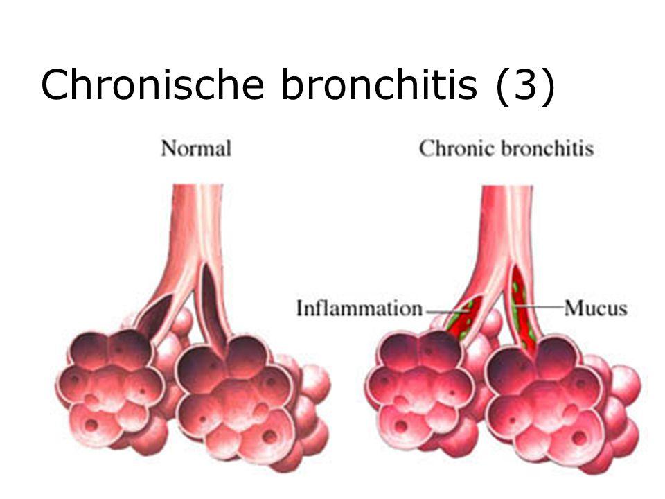 Chronische bronchitis (3)