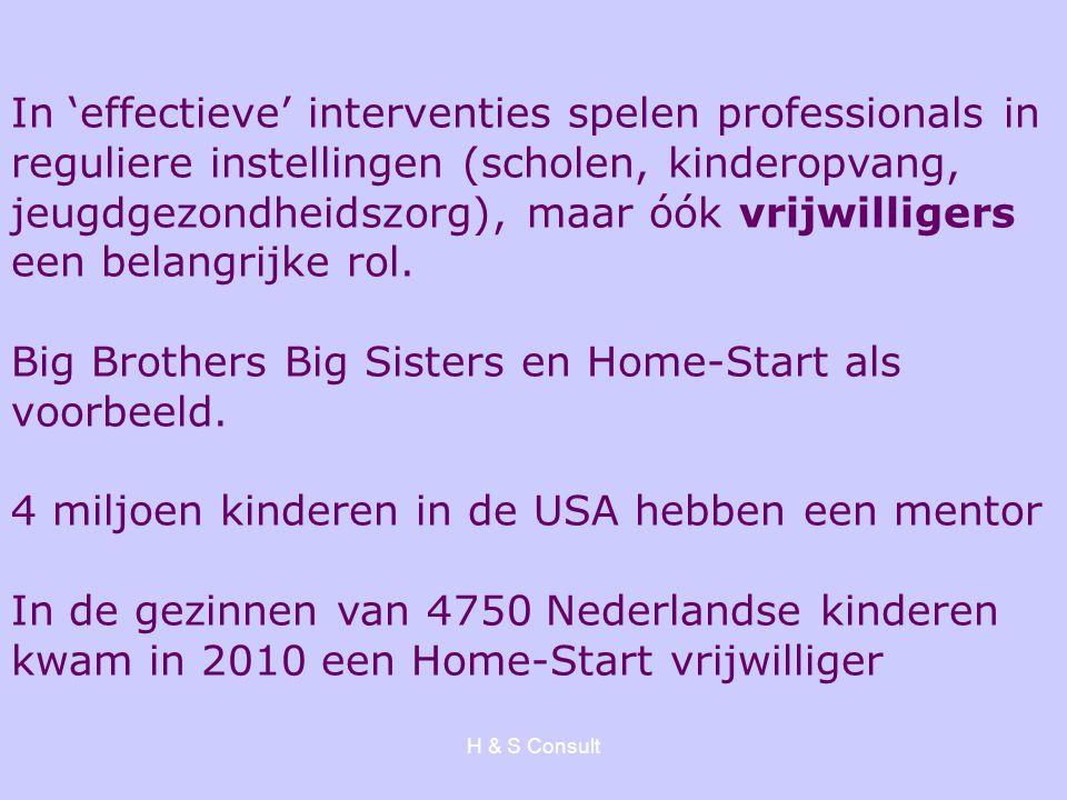Big Brothers Big Sisters en Home-Start als voorbeeld.