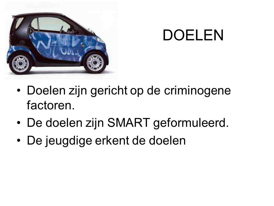 DOELEN Doelen zijn gericht op de criminogene factoren.