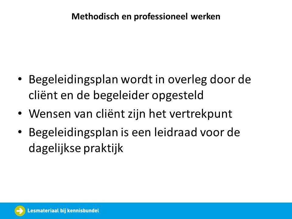 Methodisch en professioneel werken