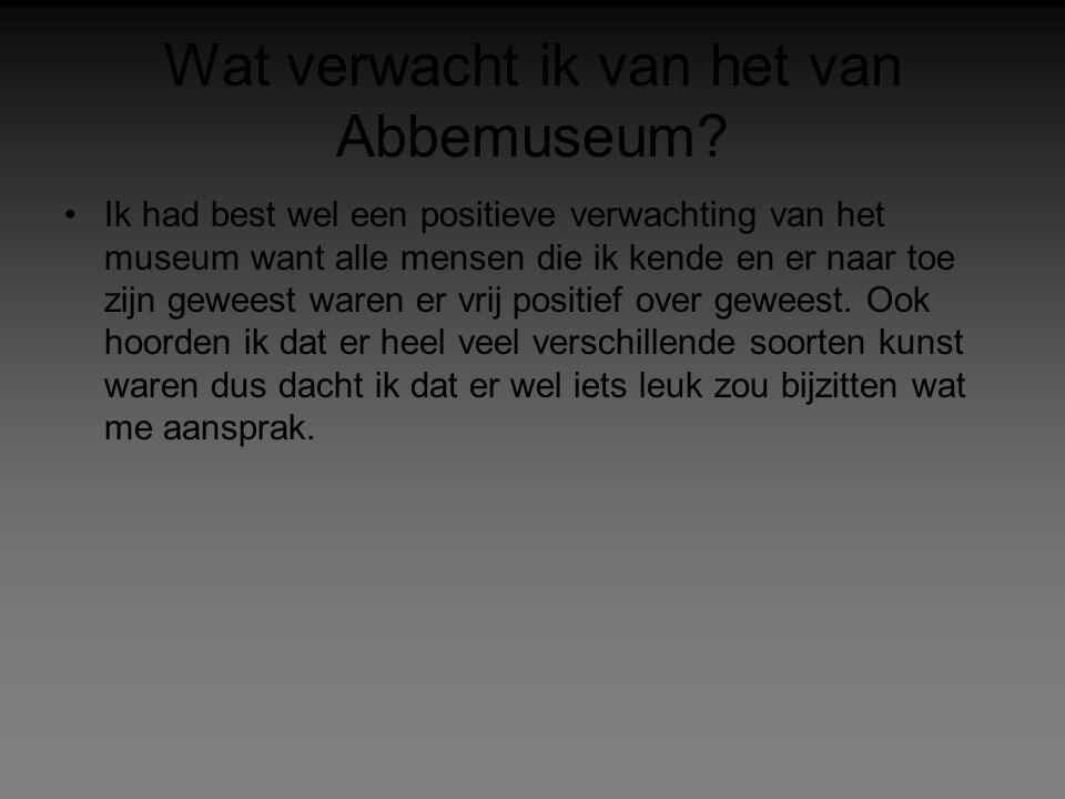 Wat verwacht ik van het van Abbemuseum