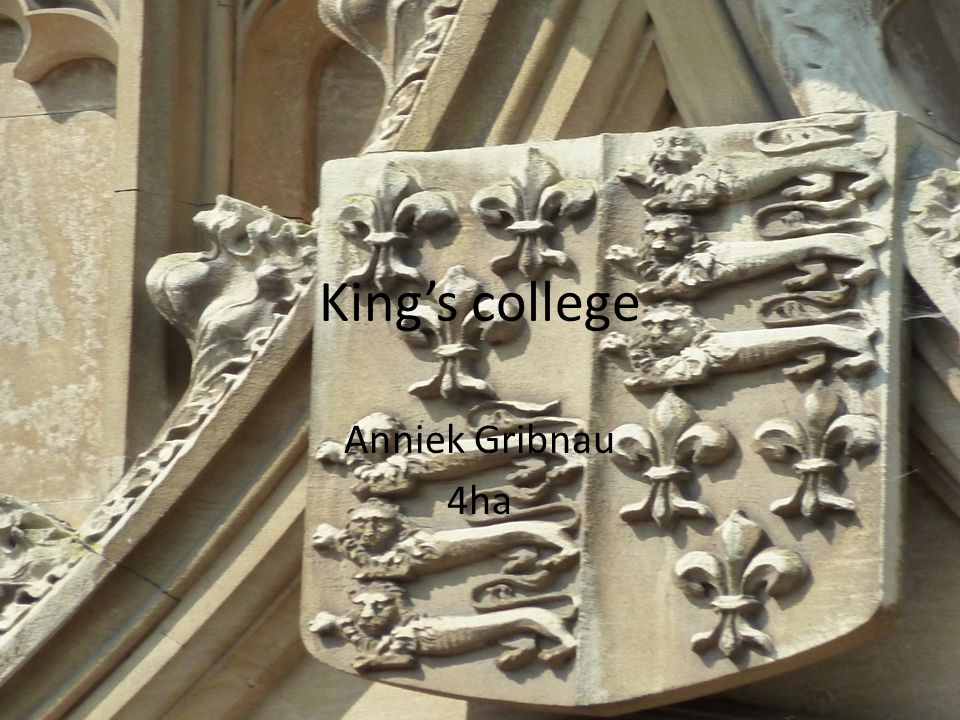 King's college Anniek Gribnau 4ha