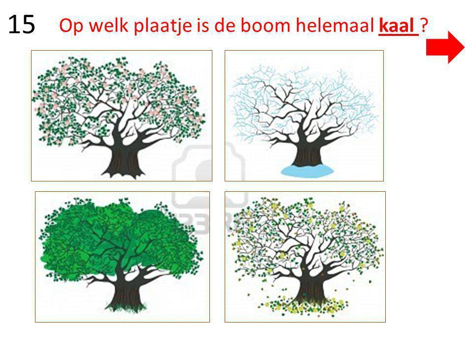 Op welk plaatje is de boom helemaal kaal