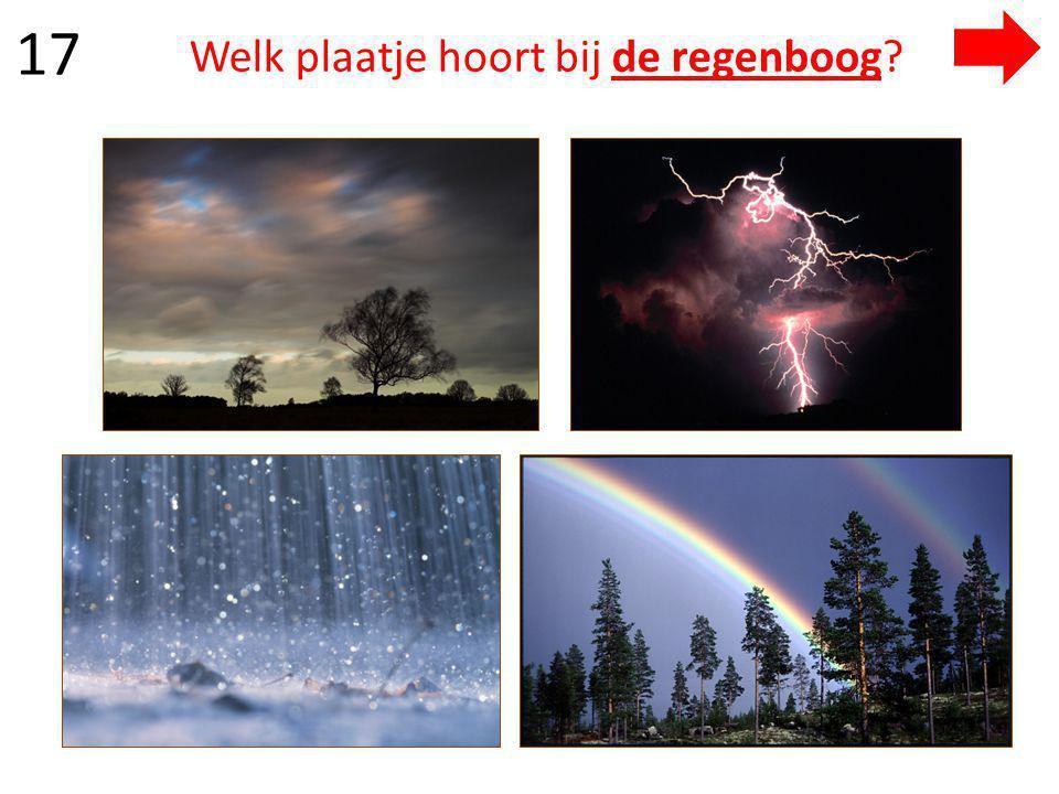 Welk plaatje hoort bij de regenboog