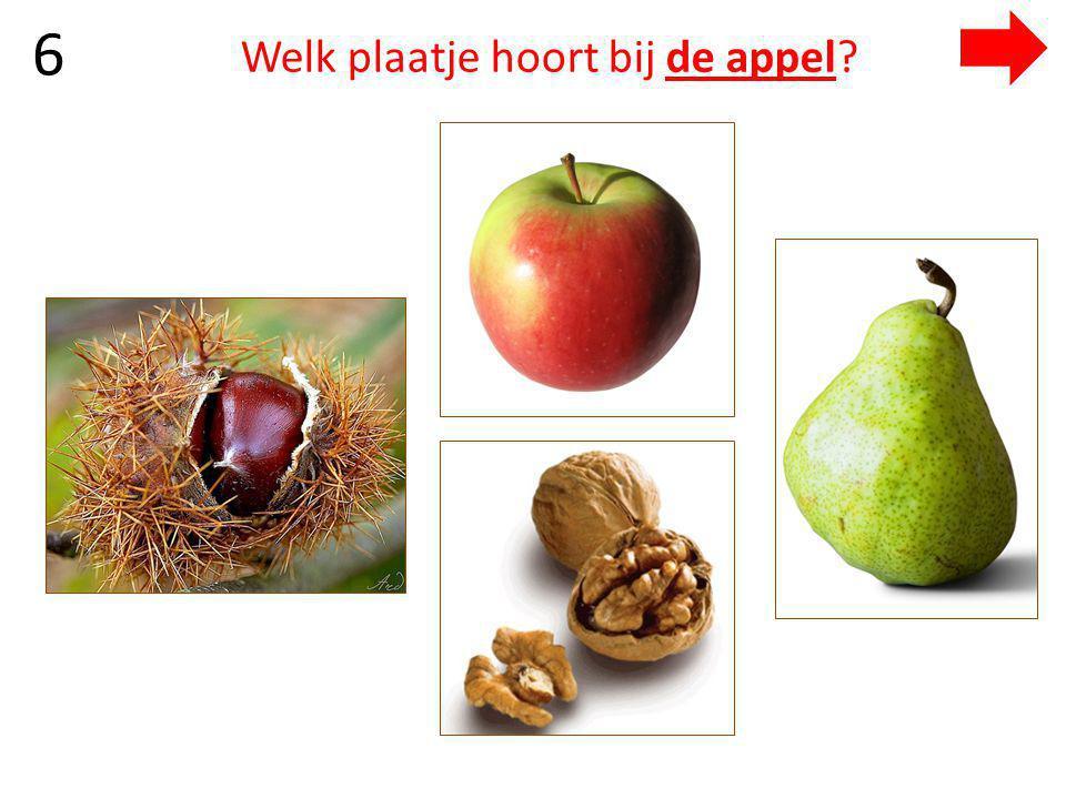 Welk plaatje hoort bij de appel