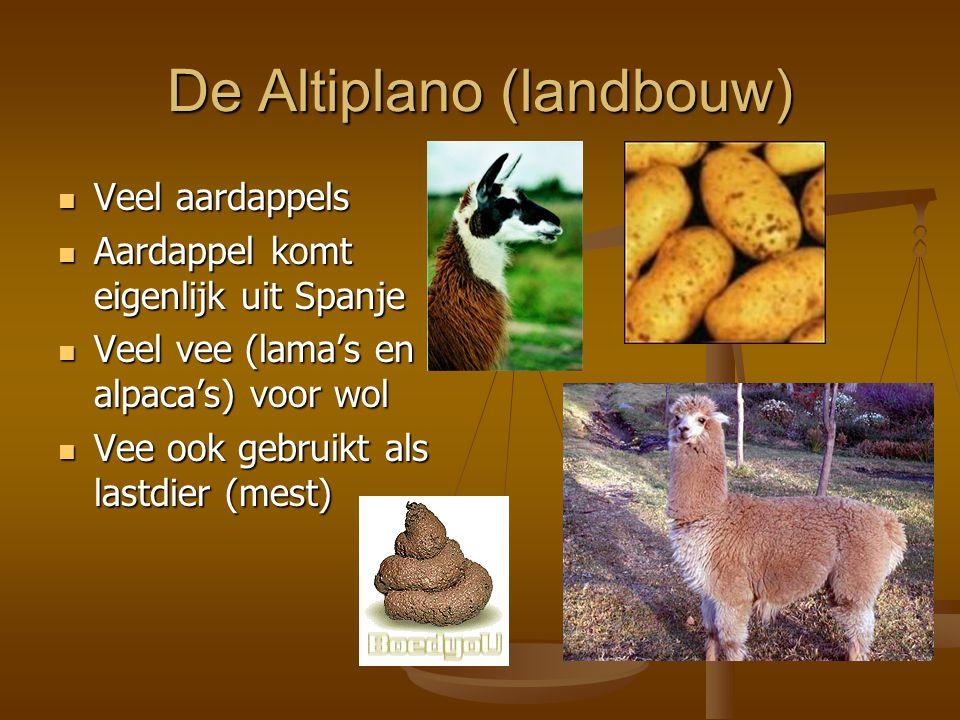De Altiplano (landbouw)