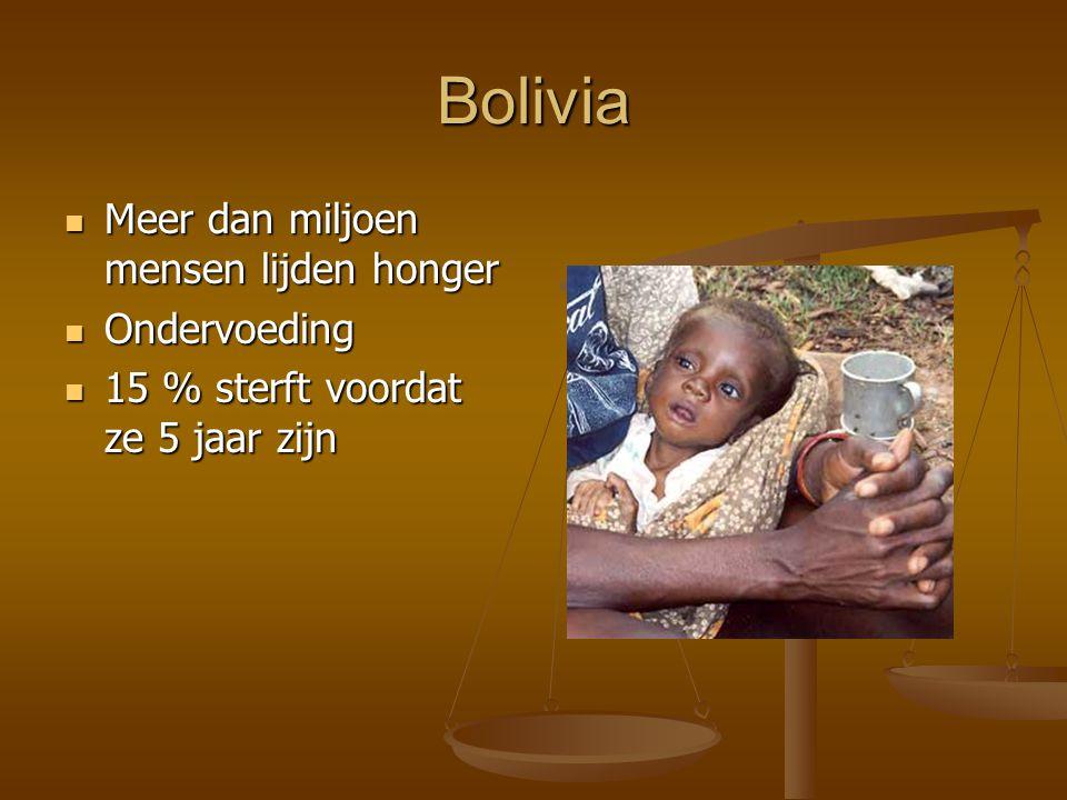 Bolivia Meer dan miljoen mensen lijden honger Ondervoeding