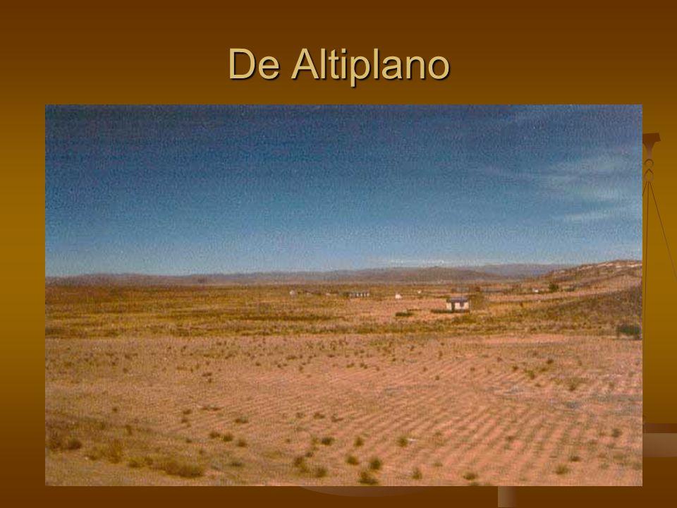 De Altiplano