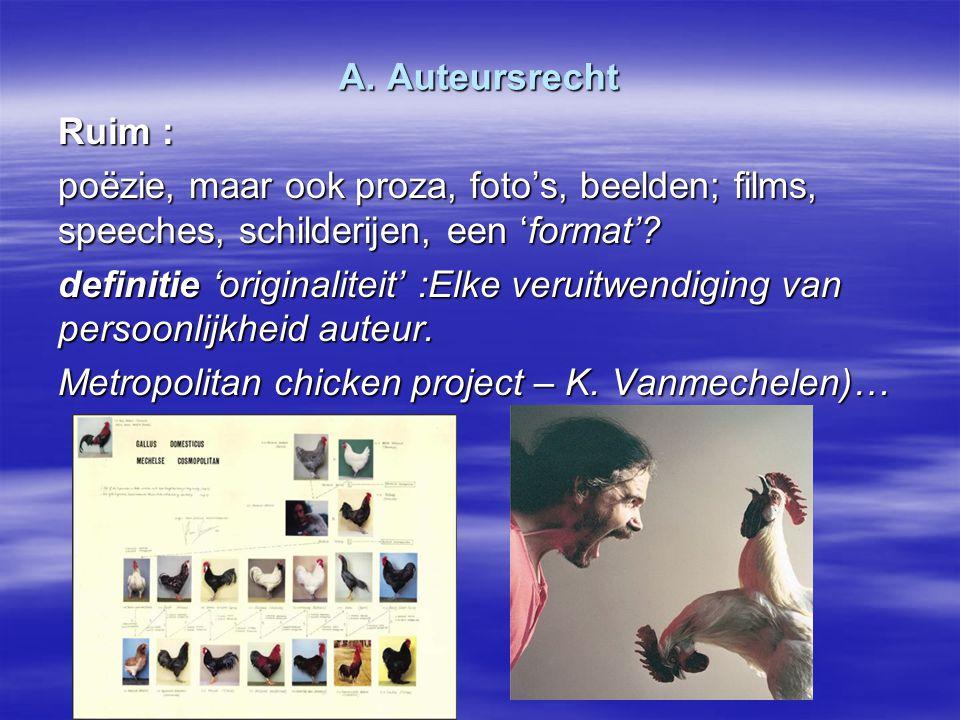 A. Auteursrecht Ruim : poëzie, maar ook proza, foto's, beelden; films, speeches, schilderijen, een 'format'