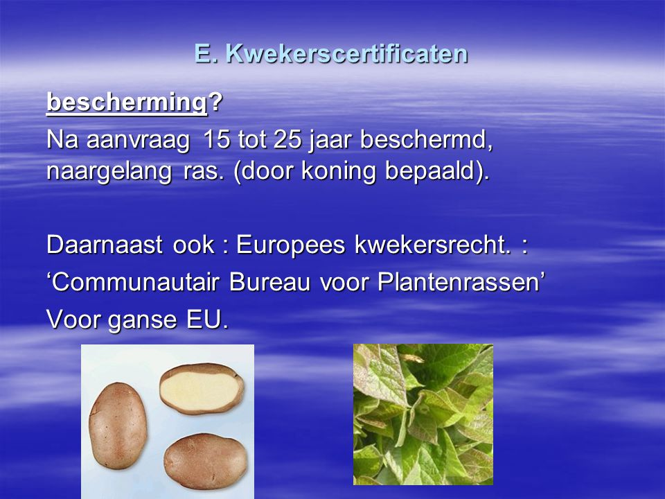 E. Kwekerscertificaten