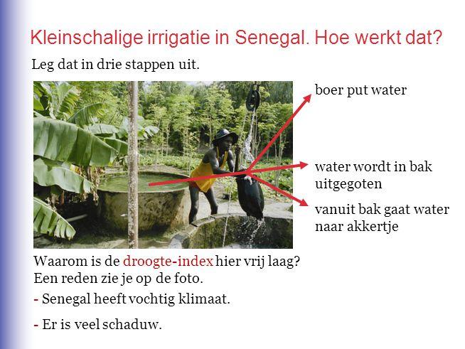 Kleinschalige irrigatie in Senegal. Hoe werkt dat