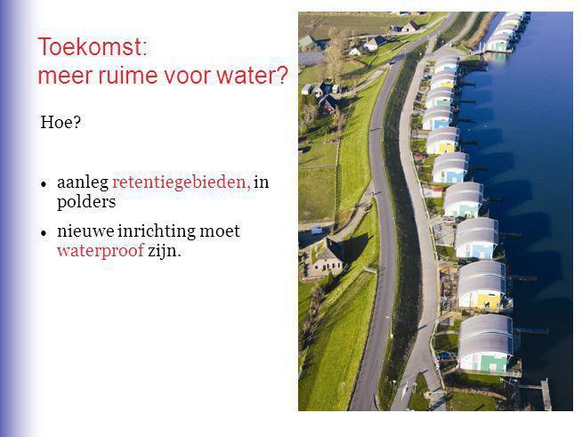 Toekomst: meer ruime voor water