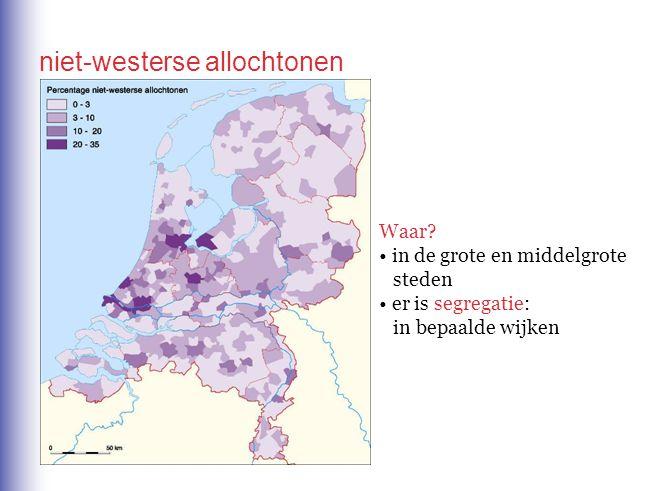 niet-westerse allochtonen