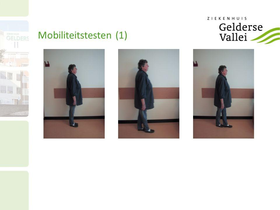 Mobiliteitstesten (1) 27