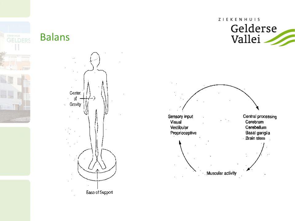 Balans 6