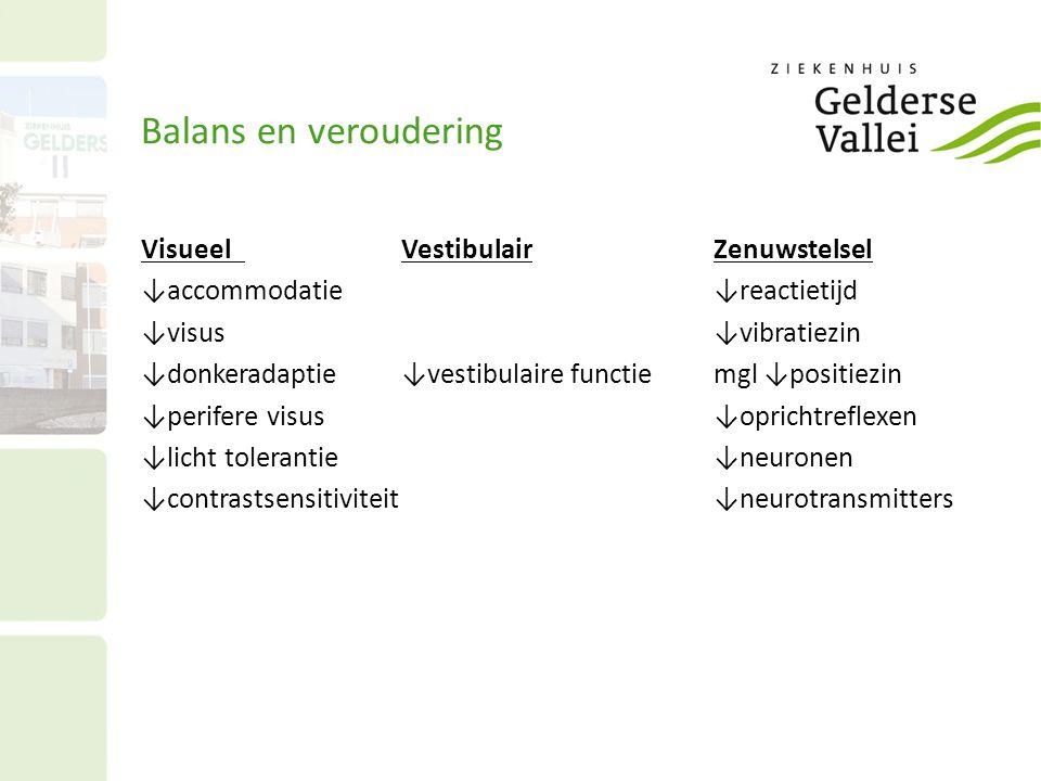 Balans en veroudering Visueel Vestibulair Zenuwstelsel