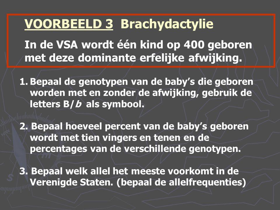 VOORBEELD 3 Brachydactylie