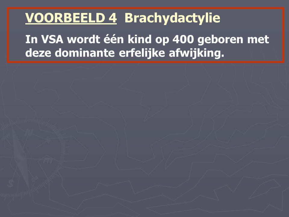 VOORBEELD 4 Brachydactylie