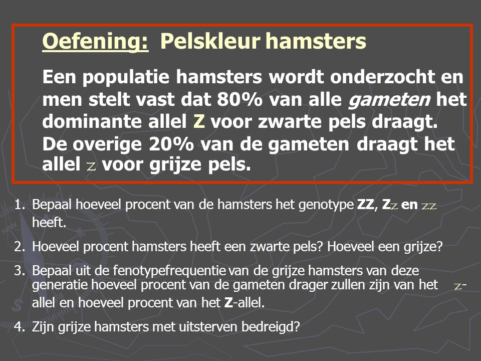 Oefening: Pelskleur hamsters