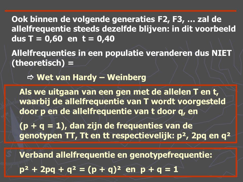 Ook binnen de volgende generaties F2, F3, … zal de allelfrequentie steeds dezelfde blijven: in dit voorbeeld dus T = 0,60 en t = 0,40