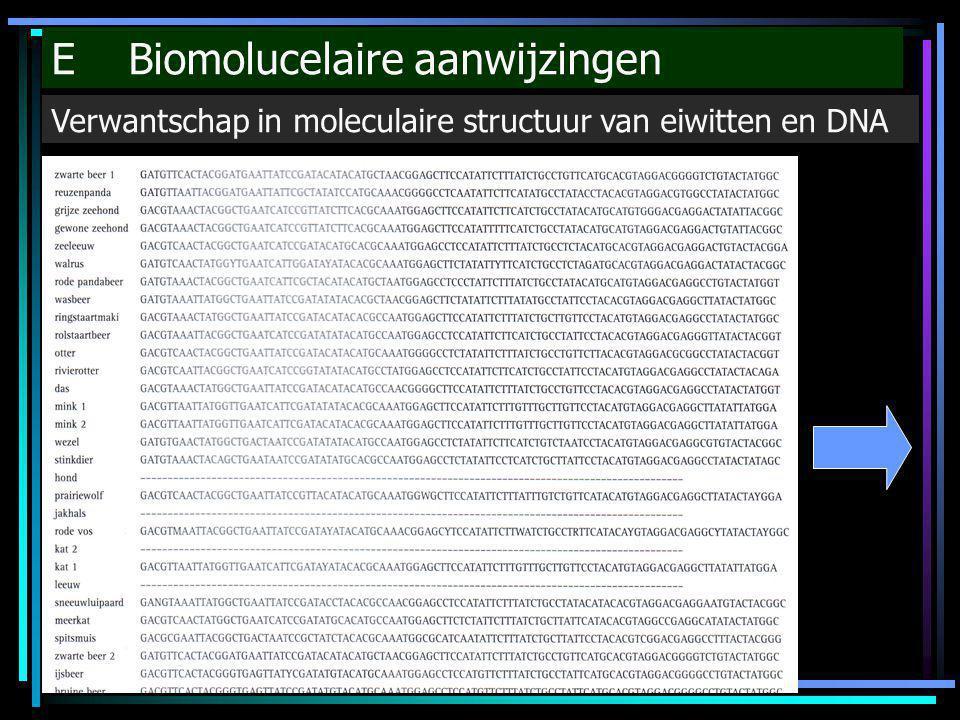 E Biomolucelaire aanwijzingen