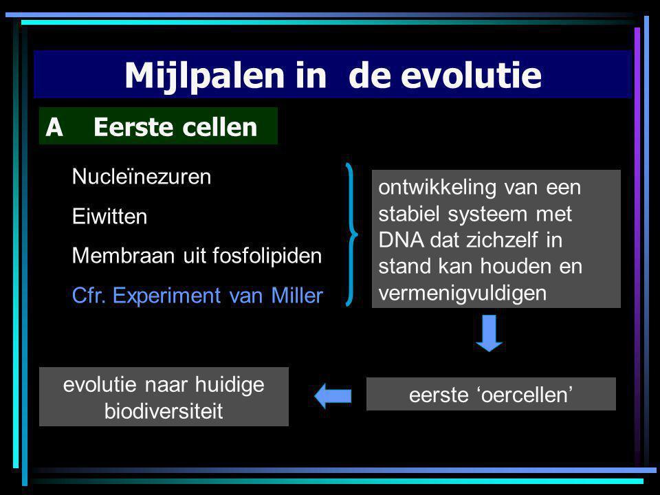 Mijlpalen in de evolutie