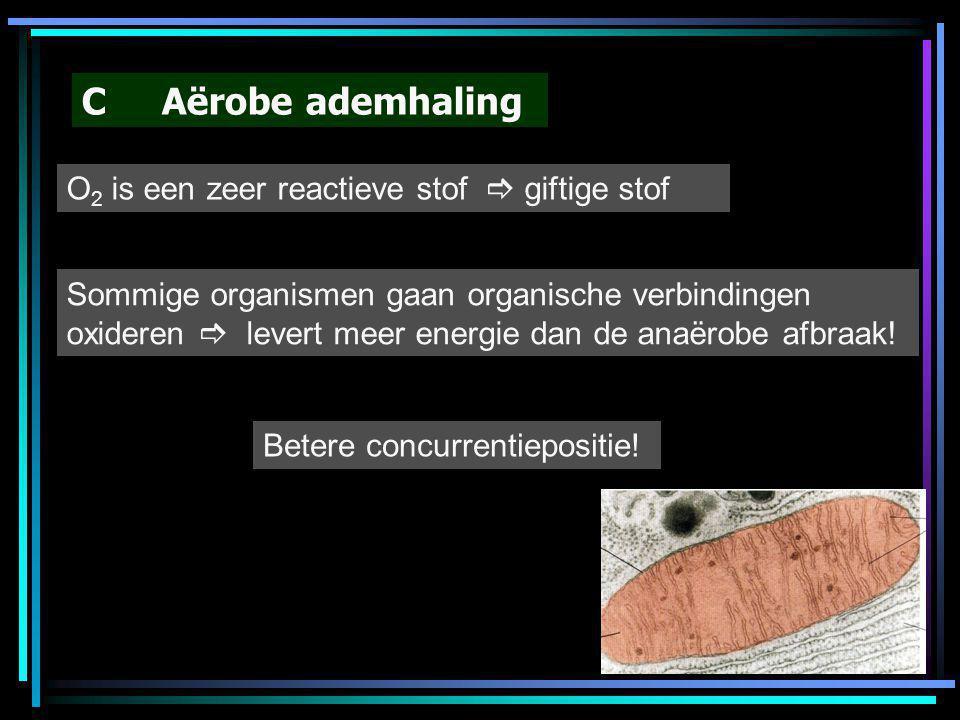 C Aërobe ademhaling O2 is een zeer reactieve stof  giftige stof