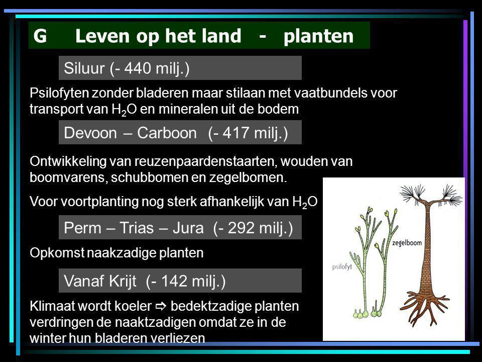 G Leven op het land - planten