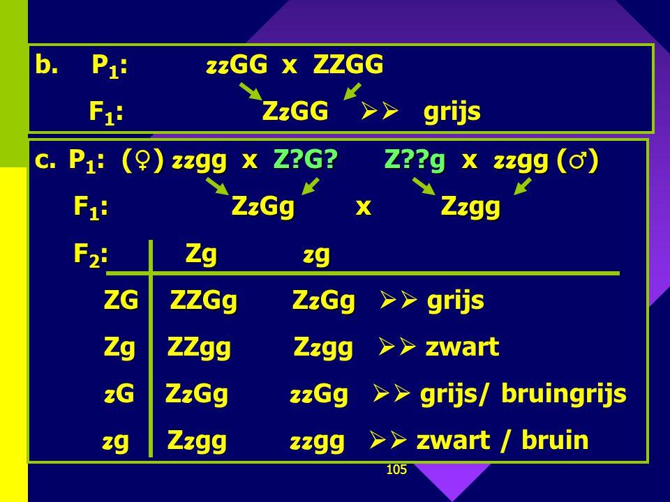 P1: zzGG x ZZGG F1: ZzGG  grijs. P1: (♀) zzgg x Z G Z g x zzgg (♂)