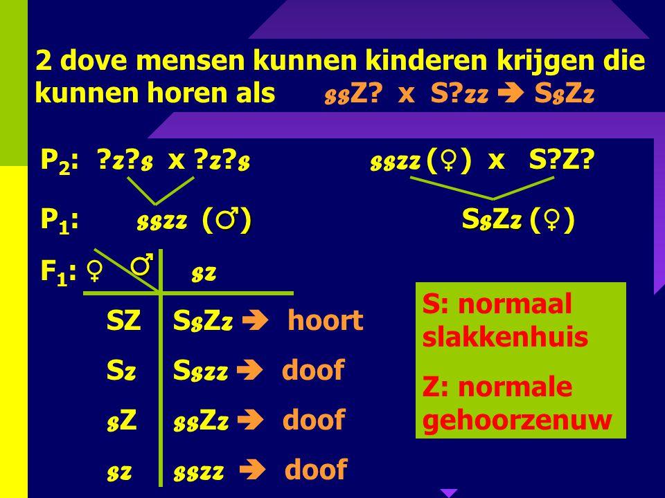 2 dove mensen kunnen kinderen krijgen die kunnen horen als ssZ. x S