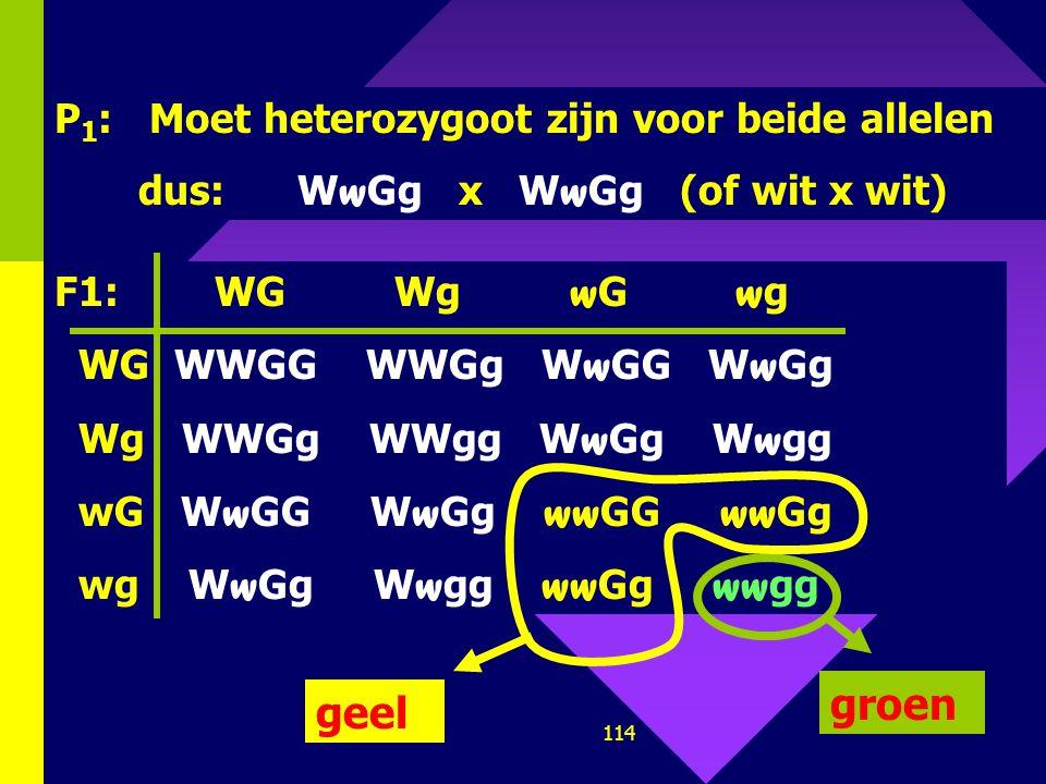 groen geel P1: Moet heterozygoot zijn voor beide allelen