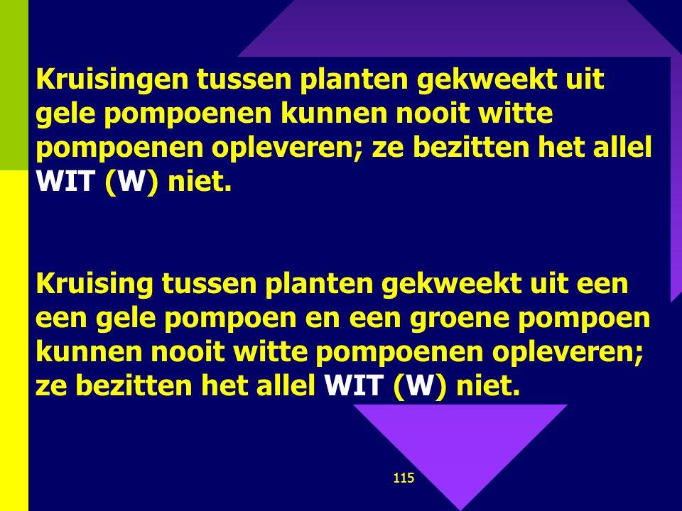 Kruisingen tussen planten gekweekt uit gele pompoenen kunnen nooit witte pompoenen opleveren; ze bezitten het allel WIT (W) niet.