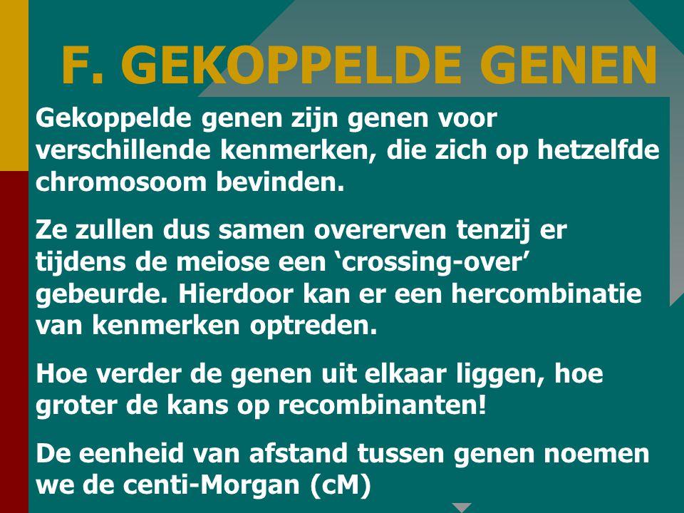 F. GEKOPPELDE GENEN Gekoppelde genen zijn genen voor verschillende kenmerken, die zich op hetzelfde chromosoom bevinden.