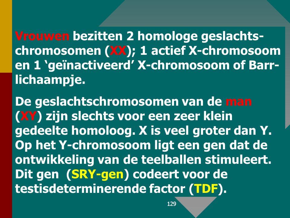 Vrouwen bezitten 2 homologe geslachts- chromosomen (XX); 1 actief X-chromosoom en 1 'geïnactiveerd' X-chromosoom of Barr-lichaampje.