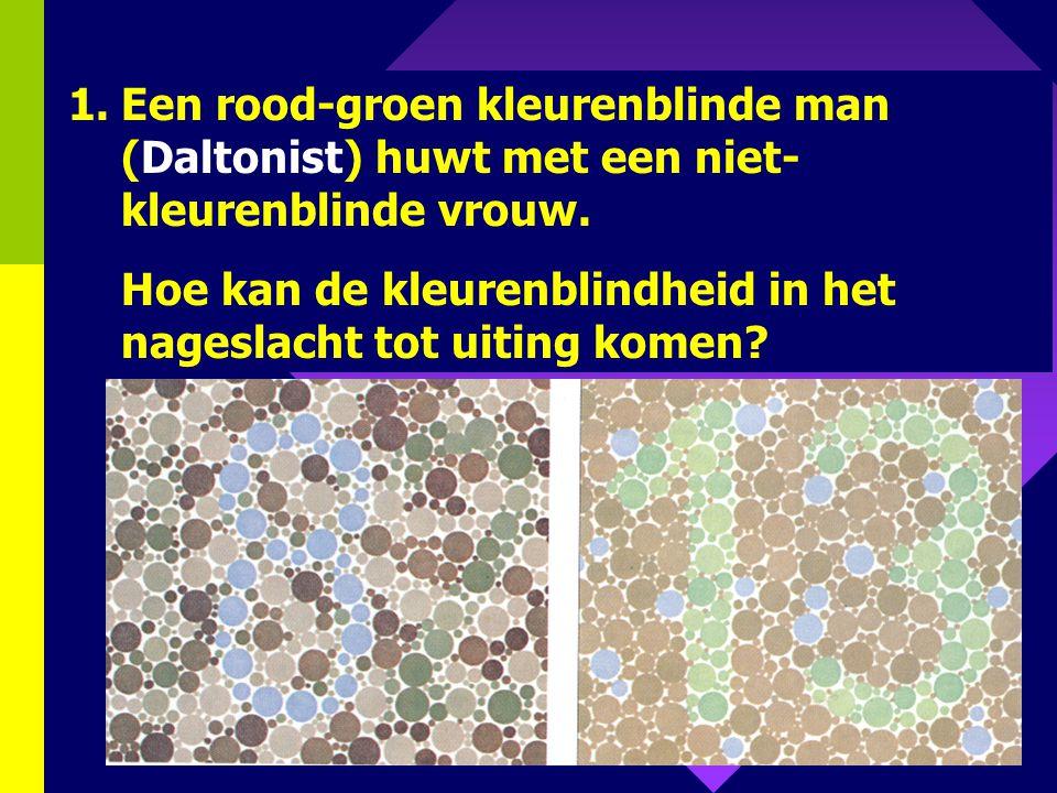 Een rood-groen kleurenblinde man (Daltonist) huwt met een niet-kleurenblinde vrouw.