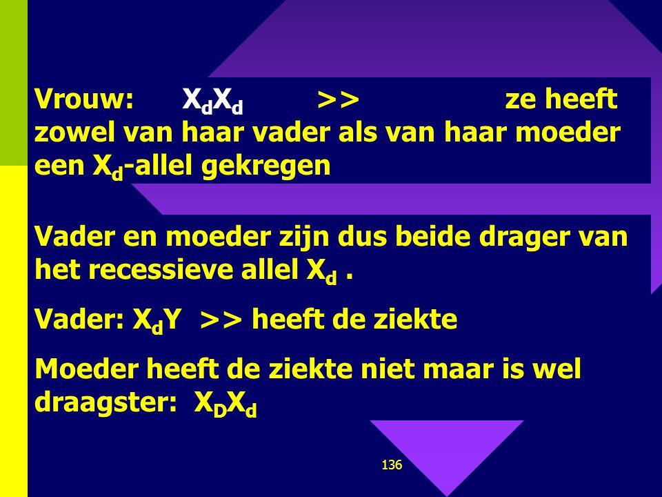 Vrouw: XdXd >> ze heeft zowel van haar vader als van haar moeder een Xd-allel gekregen