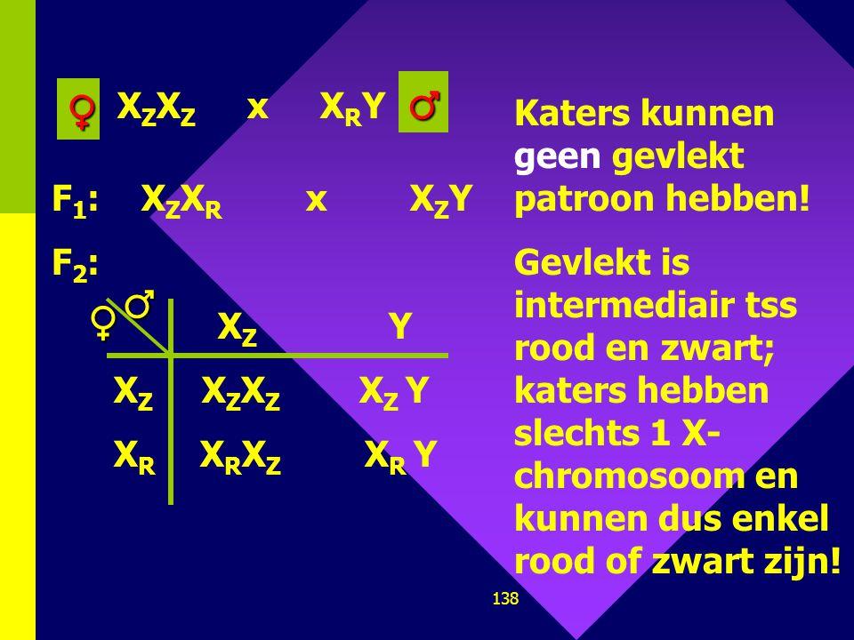 ♂ ♀ ♂ ♀ XZXZ x XRY Katers kunnen geen gevlekt patroon hebben!