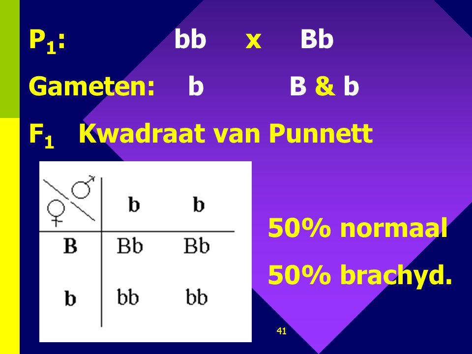 P1: bb x Bb Gameten: b B & b F1 Kwadraat van Punnett 50% normaal